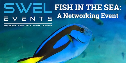 Fish in the Sea: A Networking Event