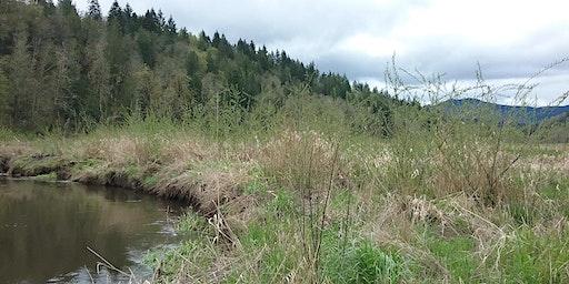 Ohop Creek Planting - 12/18
