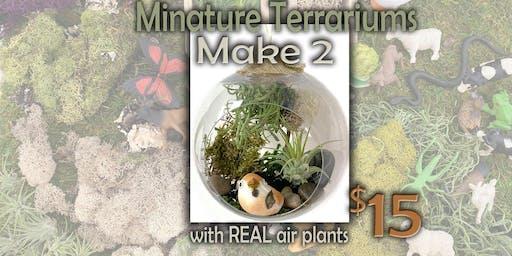 2 Miniature Terrariums workshop 12/14/19
