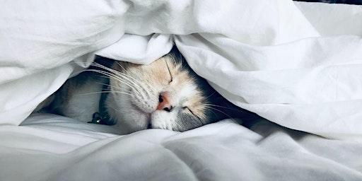 Kundalini Yoga for Good Sleep Support