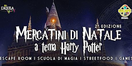 Gita ai Mercatini di Natale a Tema Harry Potter biglietti