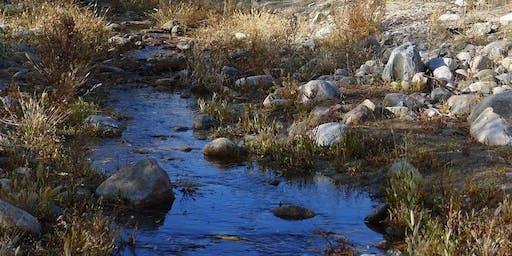 Protecting Desert Watersheds at Wildlands Conservancy's Desert Preserves Spring 2020