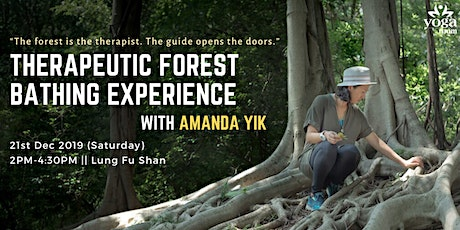 Therapeutic Forest Bathing Experience with Amanda Yik tickets