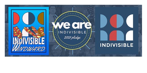 Indivisible Windward: Activism for 2020 Elections Nationwide