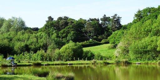 Staffordshire Spring Wild Food Foraging Course/Walk