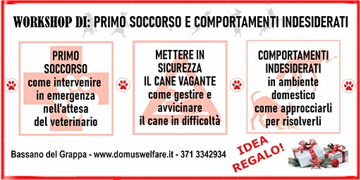 Workshop di Primo Soccorso e Comportamenti Indesiderati