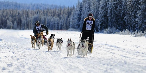2020 50th Anniversary Priest Lake Sled Dog Race and IFSS World Cup