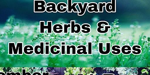 Backyard Herbs & Medicinal Uses