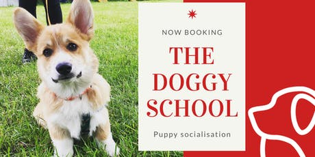 Puppy Meet Up and Socialisation tickets