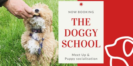 Socialisation and Puppy Meet up tickets