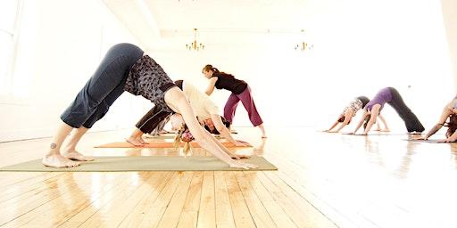 Yoga and Meditation Basics
