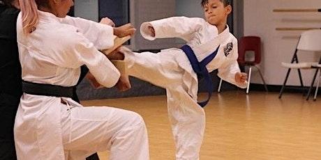 Taekwondo Trial Class & Board Breaking Workshop for 3-5 yr olds tickets
