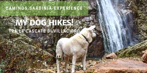 Dog hiking: passeggiata a sei zampe alle cascate di Villacidro!