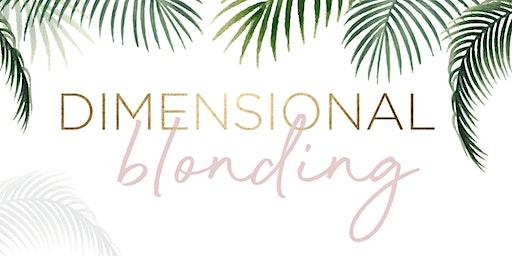 Dimensional Blonding - Terre Haute, IN