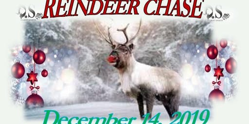 D.S. Reindeer Chase
