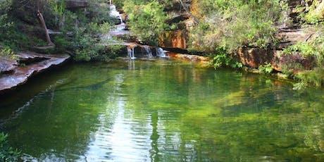 Hominy Creek Trail. tickets
