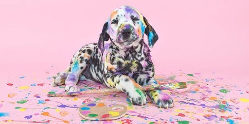 Paint Your Pooch - Picasso Style