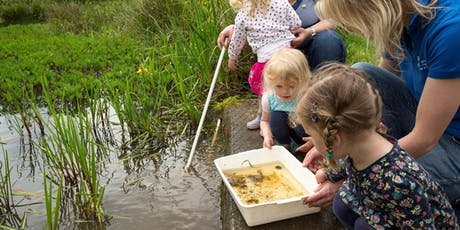 RSPB May Half term: Wild Wednesdays - Mud explorers! tickets