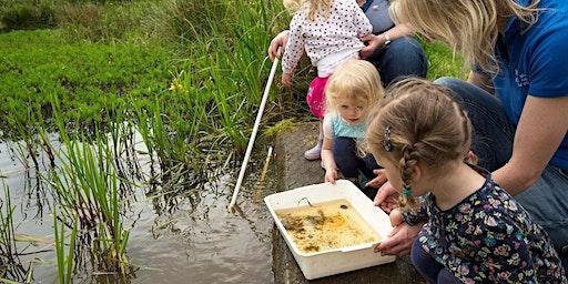 RSPB May Half term: Wild Wednesdays - Mud explorers!