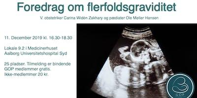 Foredrag om flerfoldsgraviditet v. GOP