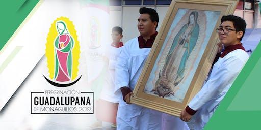 Peregrinación Guadalupana de Monaguillos