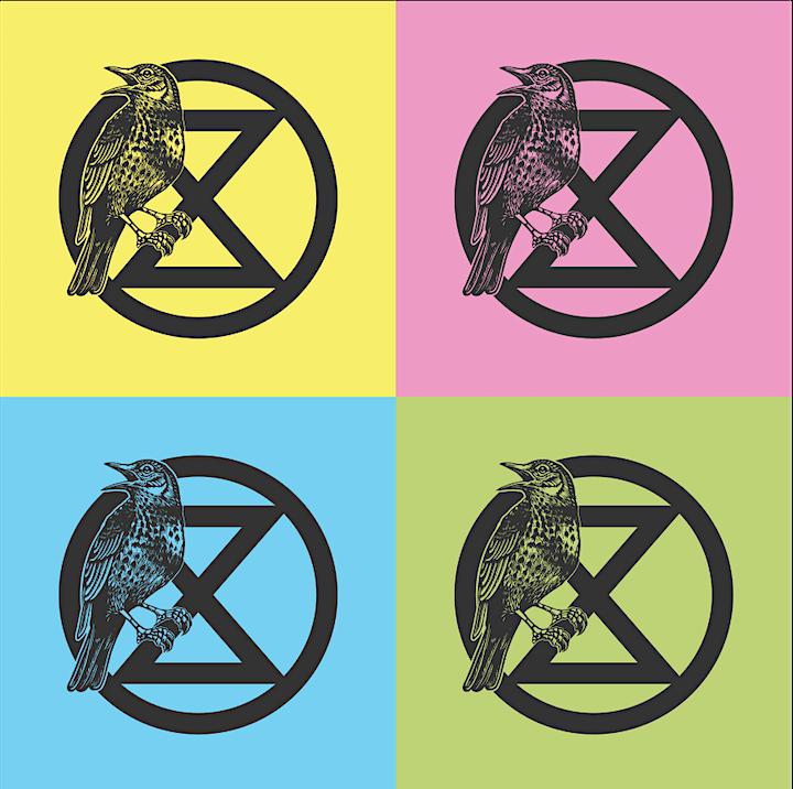 Introduction to Extinction Rebellion image