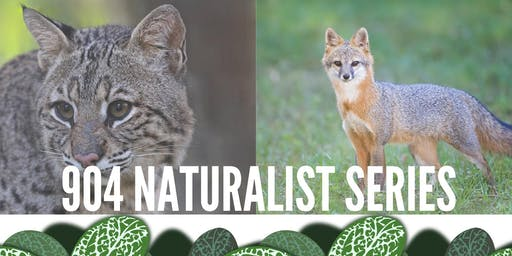 904 Naturalist Series ~ Exploring the Life of Mammals