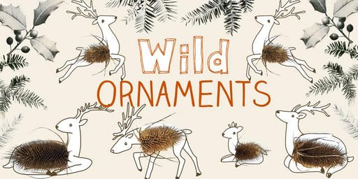 Wild Ornaments: Crafting with Natural Materials