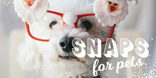 Gateway Plaza Leopold - Santa Snaps for Pets