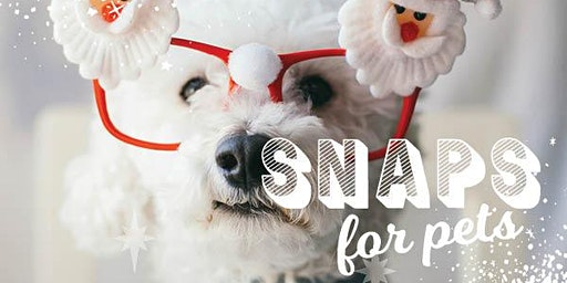 Rosebud Plaza - Santa Snaps for Pets