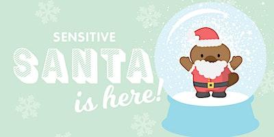 Brickworks Marketplace - Sensitive Santa