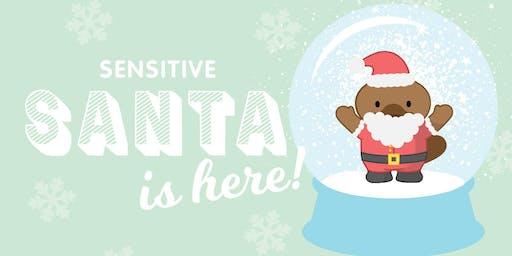 Rosebud Plaza - Sensitive Santa