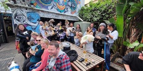 Brunswick Puppy Pub Crawl tickets