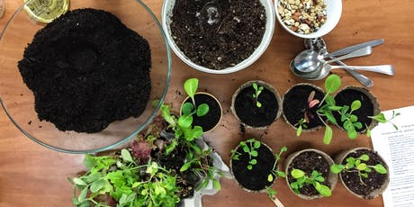 Growing Winter Veggies From Seed tickets