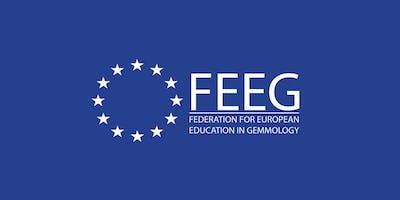 FEEG Symposium 2020