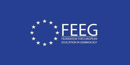 FEEG Symposium 2020
