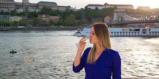 10 € Danube cruise with welcome drink