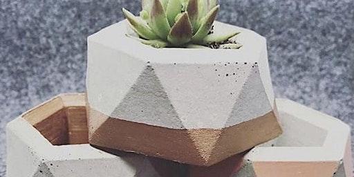Mini Concrete Planter workshop with Plastic Violet
