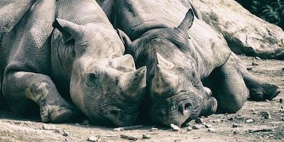 EOS Explorer: Das EOS-System in der Praxis – Tier- und Makrofotografie im Krefelder Zoo