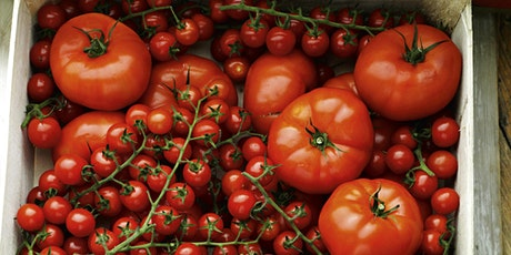 Tomato Growing & Cookery Masterclass  tickets