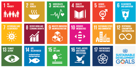 Introduction to the Sustainable Development Goals (SDGs) tickets