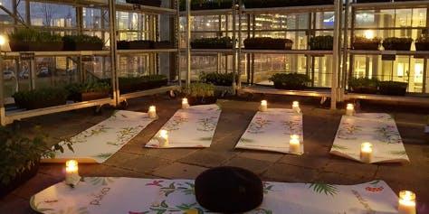 Kerst editie - Pilates tussen de planten