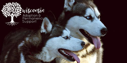 Snow Day Meet and Greet for Foster/Adoptive/Guardianship Families: Meet the Door County Sled Dogs at the Milwaukee Public Museum