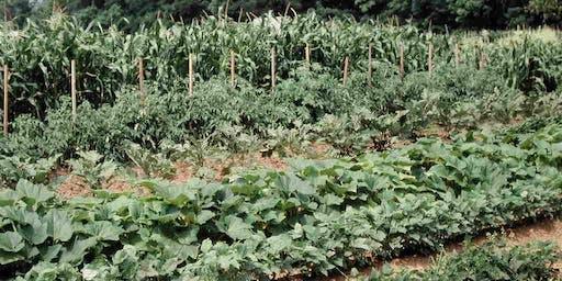 Vegetable Growing Workshop 1/11/20