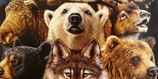 Shamanic Journey Series - Meet Your Power Animal