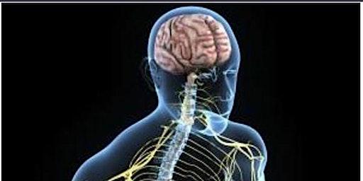 Tisna  SP  2020 :: Tratamento Integrado do SNA :: Registro de interesse