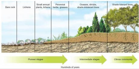 EcoSTEM Day! Using Succession to Teach the Dynamics of Ecosystem Change (HS) tickets