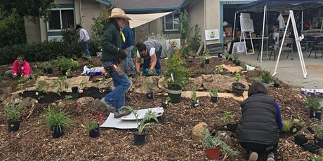 Demonstration Food Forest Installation Workshop- DAY 1 tickets