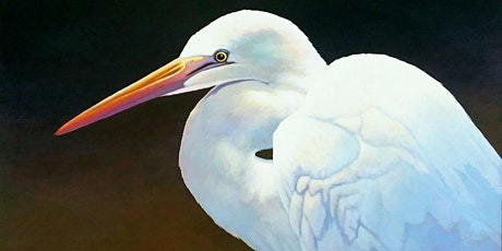 1 Day: Step by Step Painting, Lowcountry Herons with Addison Palmer tickets