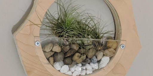 Wall Hanging Terrarium Workshop
